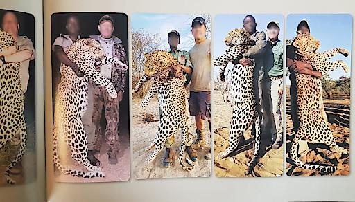 Zahlreiche Anbieter preisen blutige Jagdreisen an