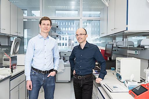 Christian Doppler Labor unter der Leitung von Manfred Lehner von der St. Anna Kinderkrebsforschung in Zusammenarbeit mit Michael Traxlmayr, Boku