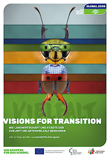 Vision for Transition