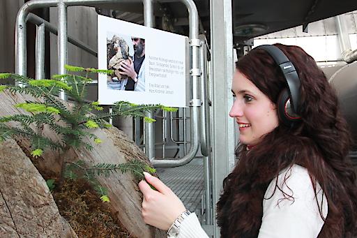 HAKI - Hans Kirchmair aus einer Holzkugel wächst ein neuer Baum....