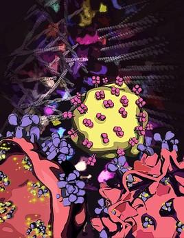 Wenn Immunzellen nicht bei Sinnen sind