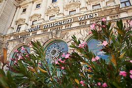 Kultursommer erleben im Weltmuseum Wien