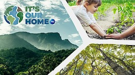 P&G befürwortet natürliche Klimaschutzlösungen und beschleunigt Aktivitäten beim Klimaschutz; sämtliche Geschäftsaktivitäten werden für die Dekade 2020-2030 CO2-neutral (FOTO)