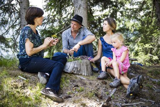 Wildkräuterwanderung in Osttirol