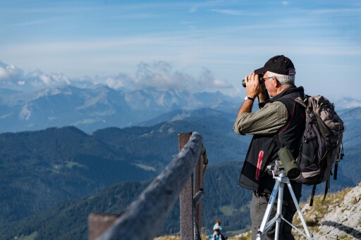 Steinbock-Safari mit dem Fernglas auf dem Pilatus