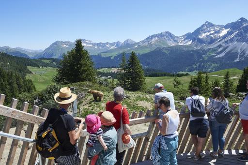 Arosa Bärenland, Graubünden