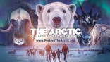 The Arctic: Our Last Great Wilderness