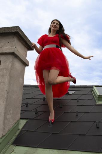 Auf den Dächern der Welt