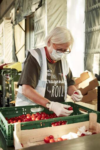 Immer mehr Menschen sind von Nahrungsunsicherheit betroffen. Zahlreiche ehrenamtliche Mitarbeiter*innen sorgen bei der Wiener Tafel dafür, dass Lebensmittel gerettet und an Menschen in Not verteilt werden.
