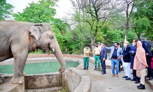 Der pakistanische Präsident und VIER PFOTEN Tierarzt Dr. Amir Khalil beim Besuch von Kaavan