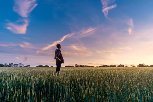 Nestlé verstärkt Engagement zur Bekämpfung des Klimawandels