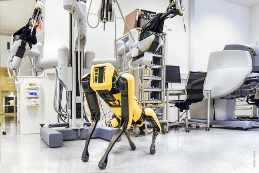 Der Bachelorstudiengang Medizin-, Gesundheits- & Sporttechnologie am MCI beschäftigt sich mit den neuesten Robotern.