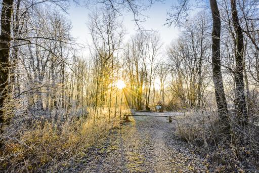 Bild zeigt: Die sonnenverwöhnte Region Bad Radkersburg hat auch im Winter – hier der UNESCO-Biosphärenpark Murauen – ihren Reiz. Veröffentlichung nur mit©pixelmaker.at
