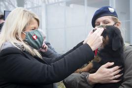 Kameraden auf vier Pfoten: Neues Welpenhaus für Hundenachwuchs beim Bundesheer