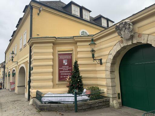 MERIDIAN Bilingual Primary School am neuen Standort in 1190 Wien, Himmelstraße 11