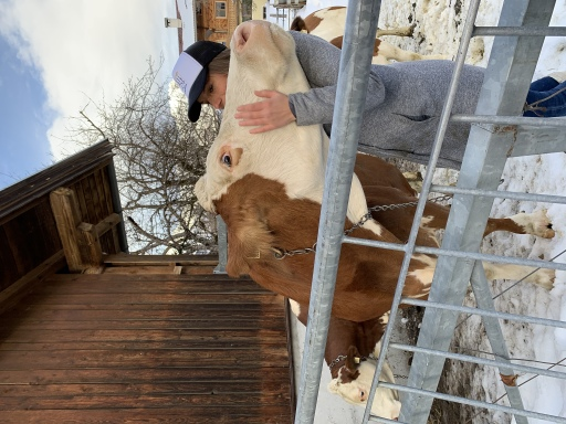 Auch Bio-Rohmilch von den eigenen Kühen gibt's am Keilhof