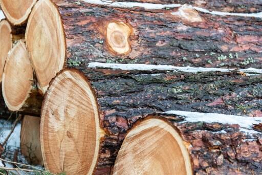 Das Nachhaltigkeits-Gütesiegel für den Maschinenring zeigt, dass die Wertschöpfungskette lückenlos gemäß PEFC-Kriterien lückenlos dokumentiert ist und das Holz aus nachhaltiger Waldbewirtschaftung kommt.