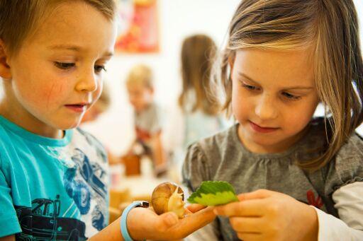 Lebens-, Entwicklungs- und Bildungs-RAUM: Der Kindergarten