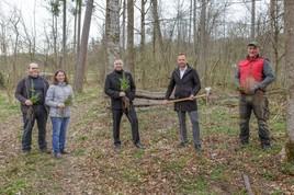 Merkur Versicherung und Waldverband Österreich pflanzen Bäume