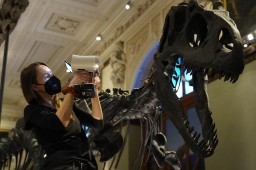 Scan des Allosaurus