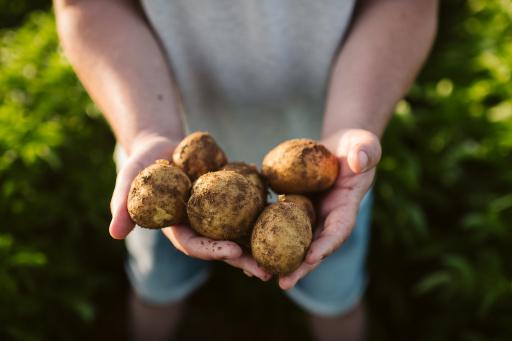 """""""Jeder Plan, der die Bewältigung der drängendsten Herausforderungen unseres weltweiten Nahrungsmittelsystems in den Blick nimmt, muss sich mit der Landwirtschaft befassen. Die Landwirtschaft sichert die Ernährung von Milliarden von Menschen und ist ein zentraler Hebel beim Kampf gegen den Klimawandel und die soziale Ungleichheit. Wenn wir zusammenarbeiten, können wir unseren CO2-Fußabdruck minimieren, die steigende Weltbevölkerung mit Nahrungsmitteln versorgen und für mehr Mitbürger ein soziales Auskommen generieren"""", so Ramon Laguarta, Chairman und CEO von PepsiCo. / Weiterer Text über ots und www.presseportal.de/nr/58045 / Die Verwendung dieses Bildes ist für redaktionelle Zwecke unter Beachtung ggf. genannter Nutzungsbedingungen honorarfrei. Veröffentlichung bitte mit Bildrechte-Hinweis."""