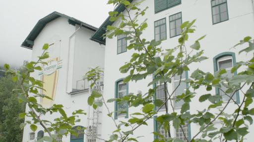 Auch am Gelände der Grünen Brauerei Schladming symbolisiert eine Buchenhecke den aktiven Klimaschutz.