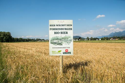 In Vorarlberg bauen sieben Bio-Bauern Braugerste für das 100 % regionale Biobier, das Fohrenburger Braumeister Bio Hofbier, an.