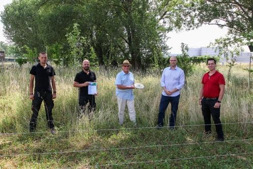 """Maintenance Team von LUKOIL: Andreas Klestil, Rene Teutsch, Alexander Rotter, Helmut Wanicek und Ing. Martin Steurer von """"Natur im Garten"""" Wien (i.d.Mitte)"""