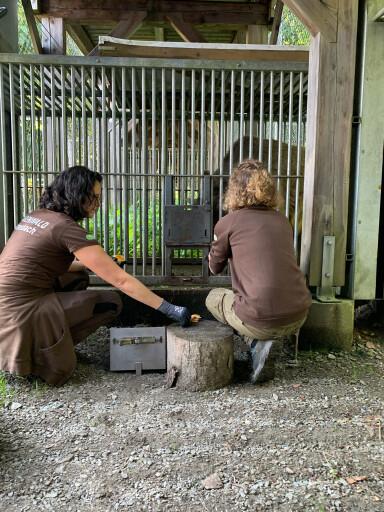 Die Tierpflegerinnen und Tierpfleger teilen nun Daten zur Futter- oder Medikamentengabe mit anderen Tierschutzzentren.