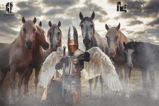 Stuntreiter und großes Ritterturnier zu Pferde